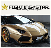 fightingstar